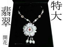 【翡翠】〓凄い迫力   大輪開花
