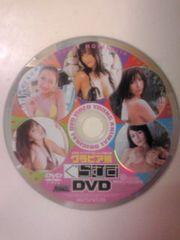 グラビア娘DVD2009ヤングアニマル付録!