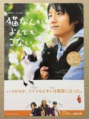 映画『猫なんかよんでもこない。』チラシ10枚◆風間俊介