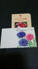 花の種  9種類セット 新品