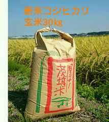 ほどよい甘みと粘りの茨城28年産新米コシヒカリ玄米30�s