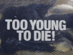 ���A!TOKIO�����q��/�f��/TOO YOUNG TO DIE!�|�[�`���O�b�Y/��