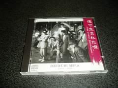 CD「一世風靡セピア/道で生まれた唄」一世風靡SEPIA 89年盤 即決