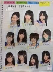 AKB48 片山部長 さいたまスーパー team 4 クリアファイル 島崎