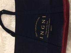 即決イング福袋2017バッグのみ新品