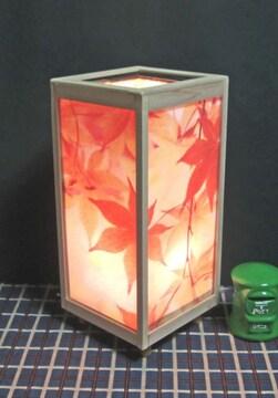 灯りの宿り木《秋冷落ち葉の舞》神秘な明かりの温もりを!!