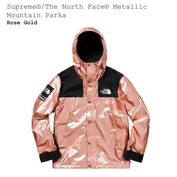 (S) Supreme THE NORTH FACE  Metallic Mountain Parka