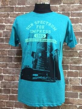 タイトM/新品!imp 5段フォトプリント Tシャツ アメカジ 西海岸スタイル f&e サーフ  3