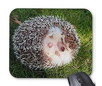 丸まったハリネズミのマウスパッド
