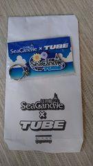TUBEチューブSea Candle江の島 コラボキーホルダー