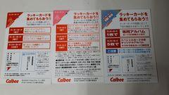 カルビーエヴァンゲリオンラッキーカード3枚詰め合わせ福袋