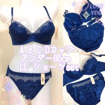 C85LL☆胸元彩るネイビー ブラジャー&パンティ 大きいサイズ