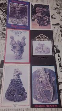 ピンクドラゴン ポストカード クリームソーダ ドラゴンミイラ