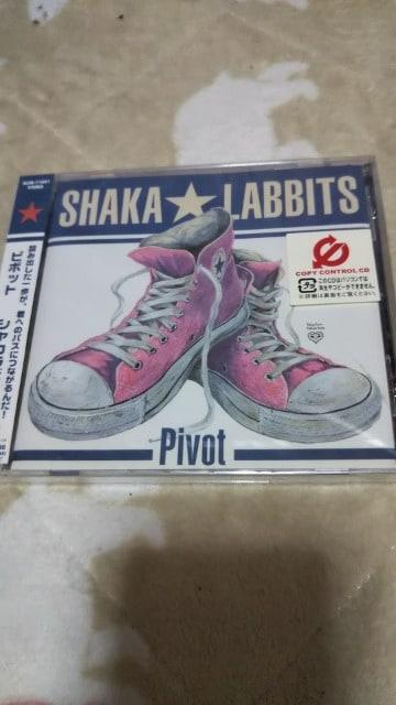 新品『ピボット』 [CDシングル]シャカラビッツ  < タレントグッズの