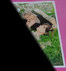 弓月あや 翡翠の森の眠り姫 コミコミスタジオ購入特典小冊子