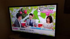 オリオン社製29インチ液晶テレビ