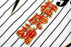 阪神 刺繍 ワッペン 応援 ユニフォームに 猛虎魂 赤黄