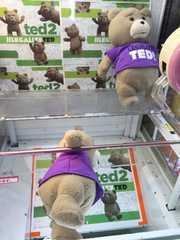新品  ted ビッグ ぬいぐるみ 超カワイイ
