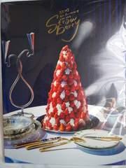 NEWS  15周年 Strawberry パンフレット