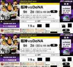 9/2(日)阪神vs横浜ライト外野指定席19段ペアー通路席
