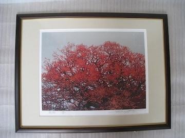 絵画 シルクスクリーン 作者「池上壮豊」氏   題名「威樹」